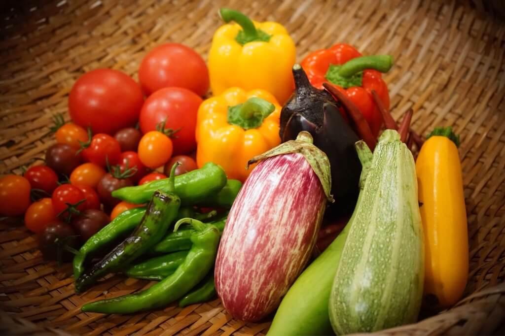 美味しい野菜 有機栽培 有機肥料 堆肥 リバイブソイル
