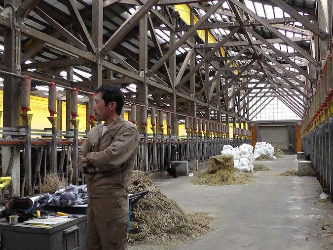 飛騨かわい 畜産 ファーム 牧場