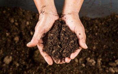 一般的な堆肥との違い
