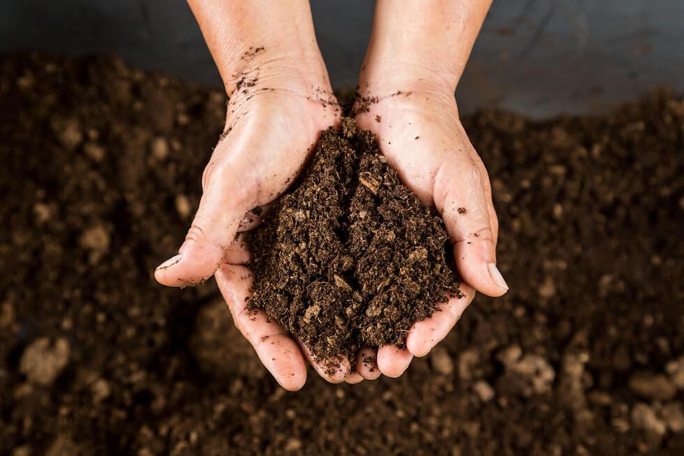 リバイブソイル ふかふか 土壌 社会的農業ラボ